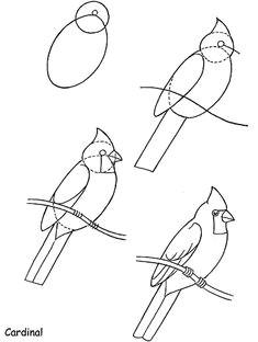 how to draw birds cardinal by neefer bird art drawing birds cardinal