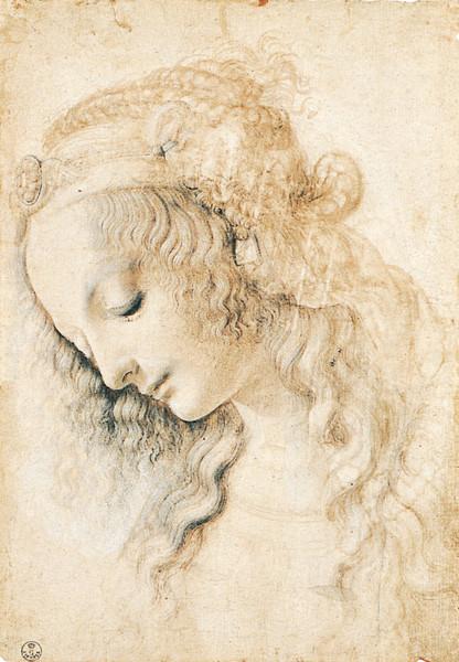 head of a young woman by leonardo da vinci a list of 10 master drawers