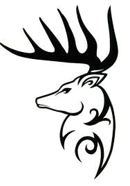 image result for deer skull drawing easy