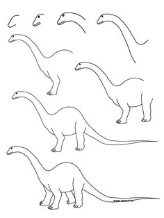 Easy Drawings Dinosaurs 38 Best How to Draw Dinosaurs Images Dinosaurs Dinosaur Drawing