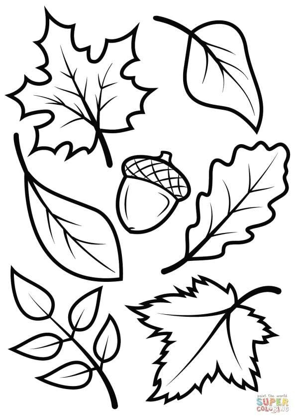 simple drawings for boys inspirational cool drawings for kids beautiful best cool coloring printables 0d pexels photo
