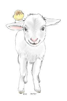 realistic drawings easy drawings pencil drawings sheep drawing drawing animals drawing