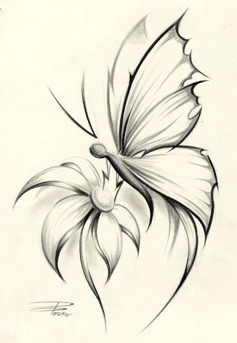 butterfly flower by davepinsker on deviantart