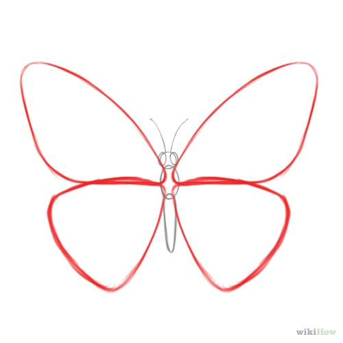 how to draw a butterfly 14 steps with pictures wikihow