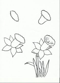 art class ideas easy flower drawings easy to