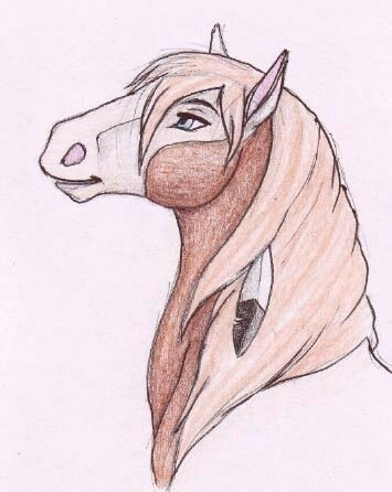 spirit the horse spirit horse movie easy horse drawing drawings of horses