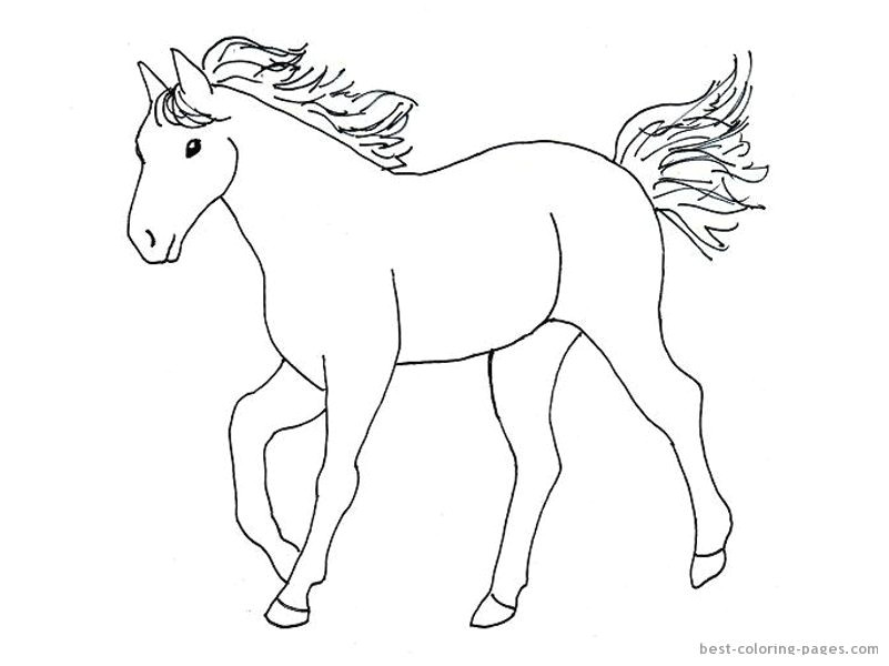 simple horse drawings for kids images pictures becuo