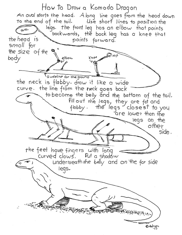 how to draw a komodo dragon worksheet see the blog for projects notes http