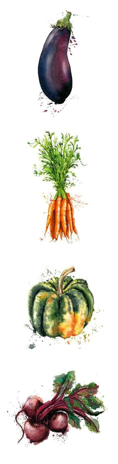vegetables illustration drawing verdure illustrazione disegno art by georgina luck watercolor