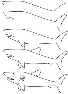 Easy Drawings Shark 1533 Best Draw Easy Images Sketches Easy Drawings Simple Drawings