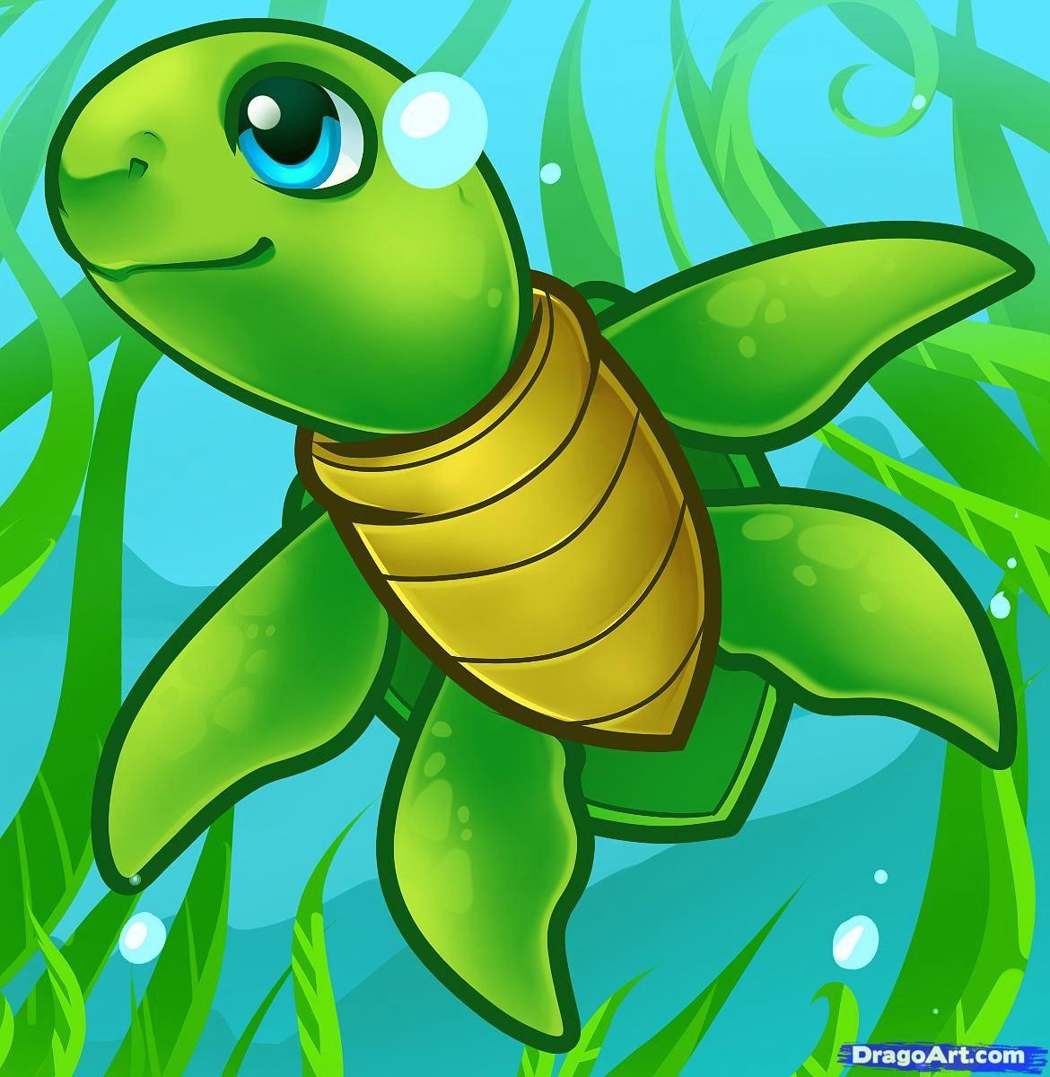 how to draw a sea turtle cartoon sea turtle