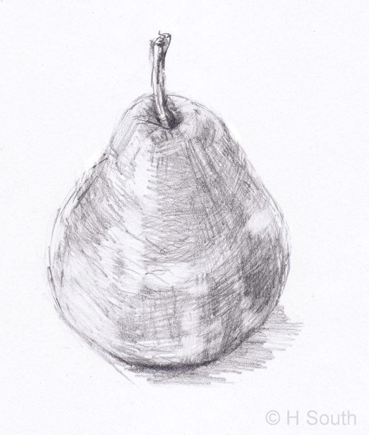 pear drawing 3 56a26d6b3df78cf772758a1c jpg