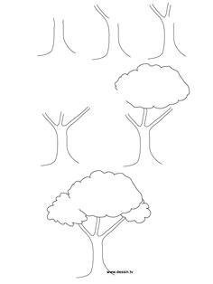 aprendemos a dibujar un rinca n en casa pagina 17 tree drawing simpledrawing