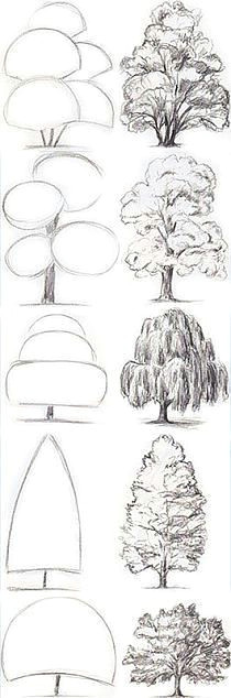 rysunki na stylowi pl drawing trees tree drawing simple drawings of trees