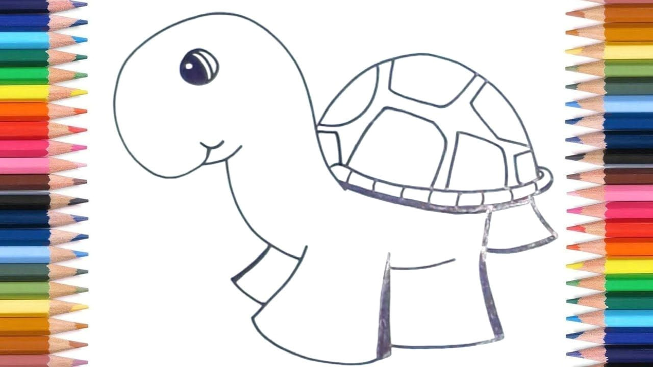 how to draw turtles for kids easy kids easy drawing tutorials kids kidsroom drawing drawinglessons children cuteanimals turtle youtube