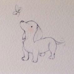 puppy collection dachshund
