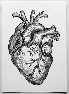 heart a4 poster of my original ink drawing by dianastanga on etsy 12 01 royalty