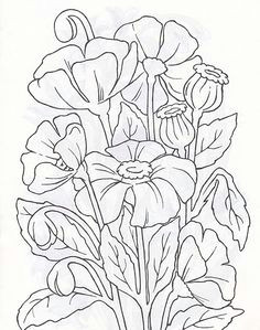 d n n d n n d d d d n dod d d d n dod d d d n don d n dod n d d dod d d d n d n n n d d n d n d d n d d d n d dod d judy lipscomb a flower sketch images