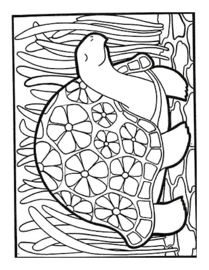 15 photos of elegant frog with flowers coloring page