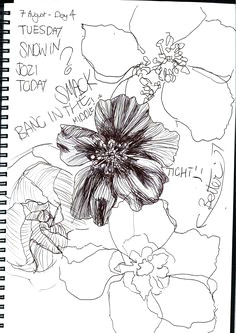gillian cook a flower a day project day 6 line drawing and continuous line