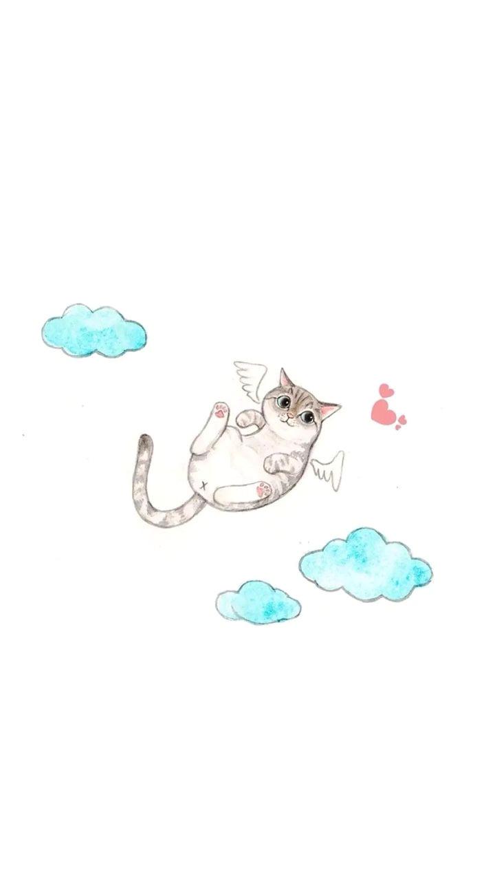 iphone wallpapers simple funny cat wallpaper