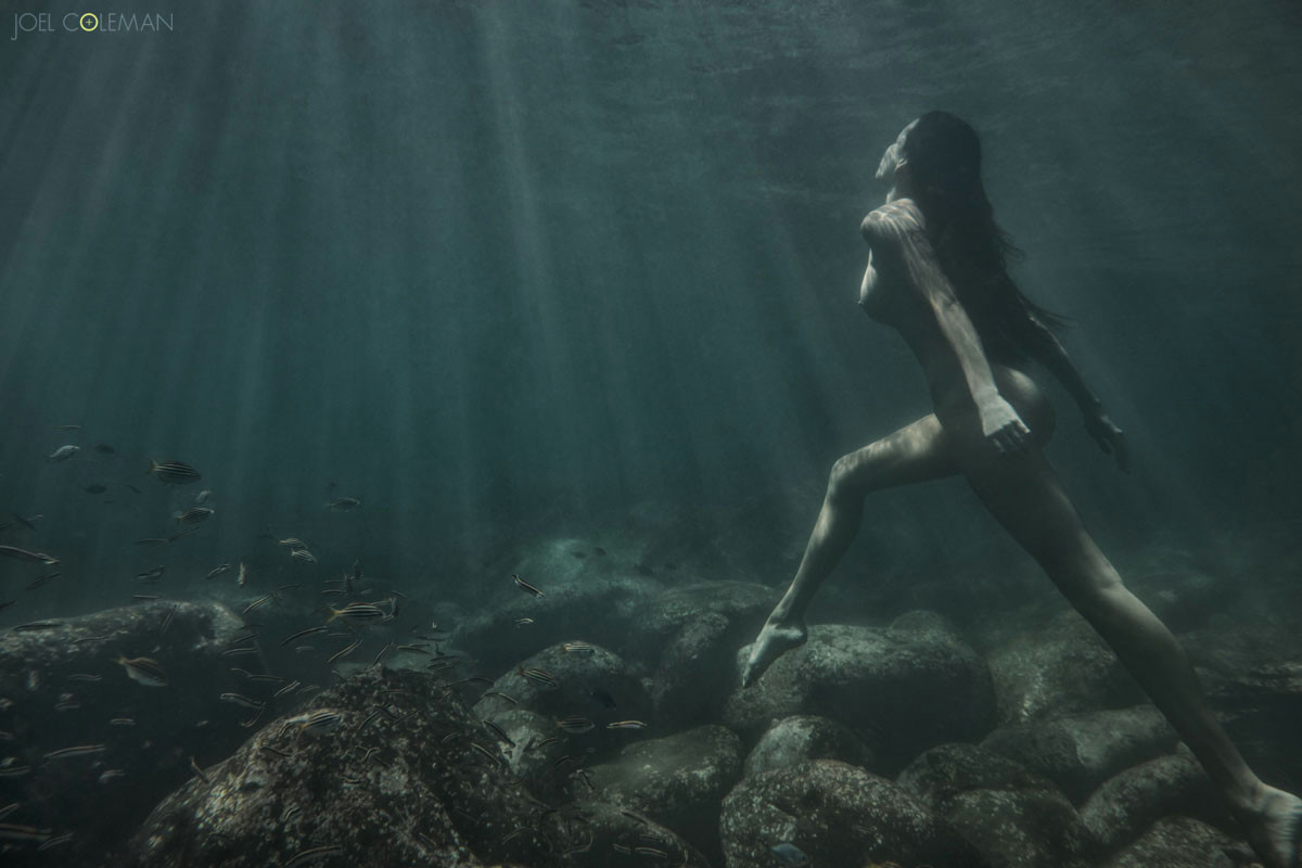 nereids a collection of underwater nudes
