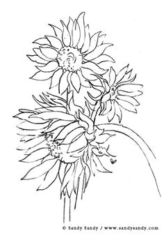 pencil drawings a simple but nice could be the start od a good mixed media sunflower sketches