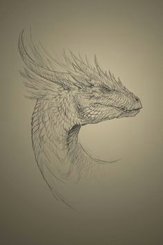 Hard Drawings Of Dragons 216 Best Dragons for Carving Images Pencil Drawings Dragon Sketch