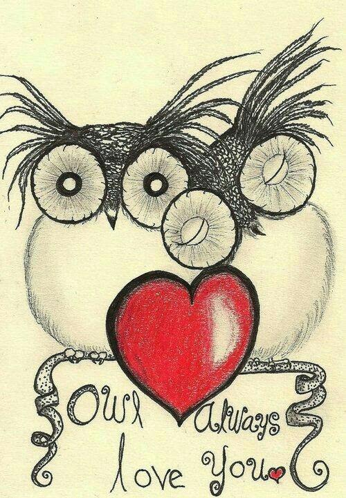 owl always love you heart painted rock idea