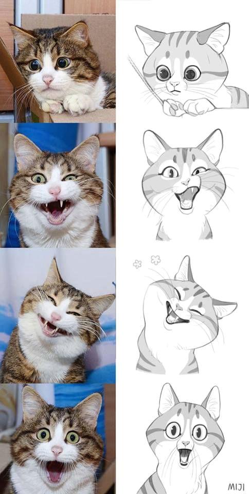 miji lee cute cats funny cats cute cat drawing cute drawings cat