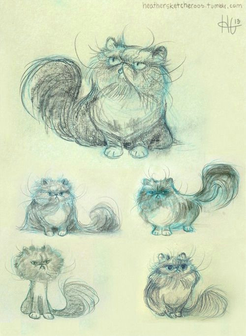 some warm up sketches from a commission for rosalind of her adorable little kitty louis