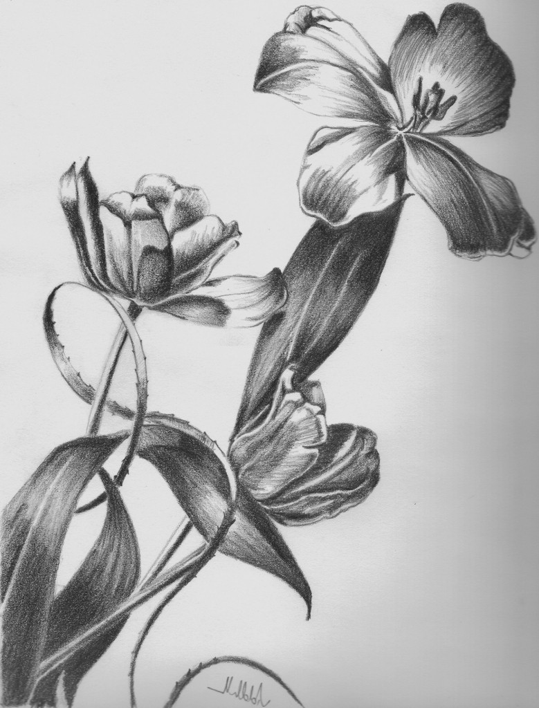 pencil sketches of flower vase drawn vase pencil sketch 1h vases flower drawing 5i 0d