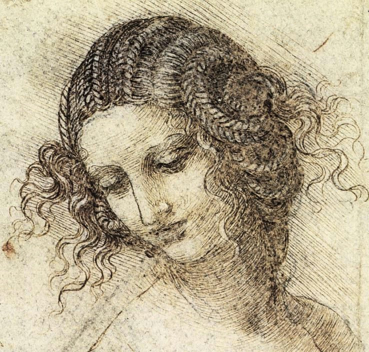 princess leia study for the head of leda leonardo da vinci c 1505 1507