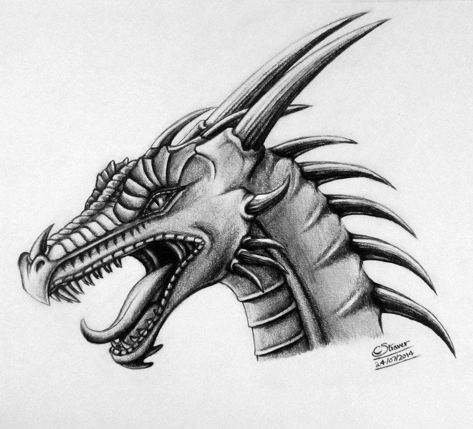 dragon head drawing by lethalchris deviantart com on deviantart