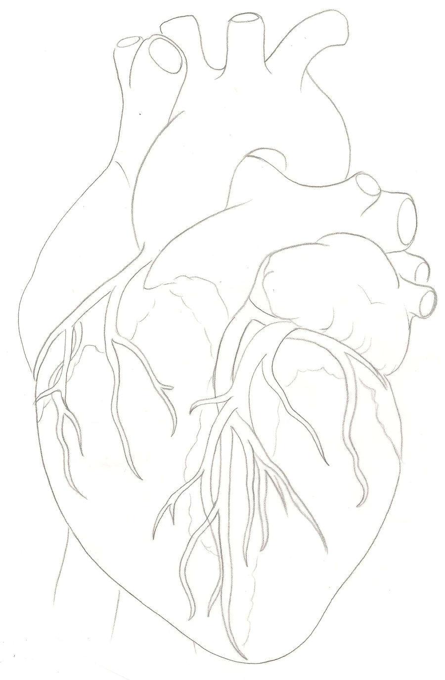 human heart tattoo by metacharis on deviantart