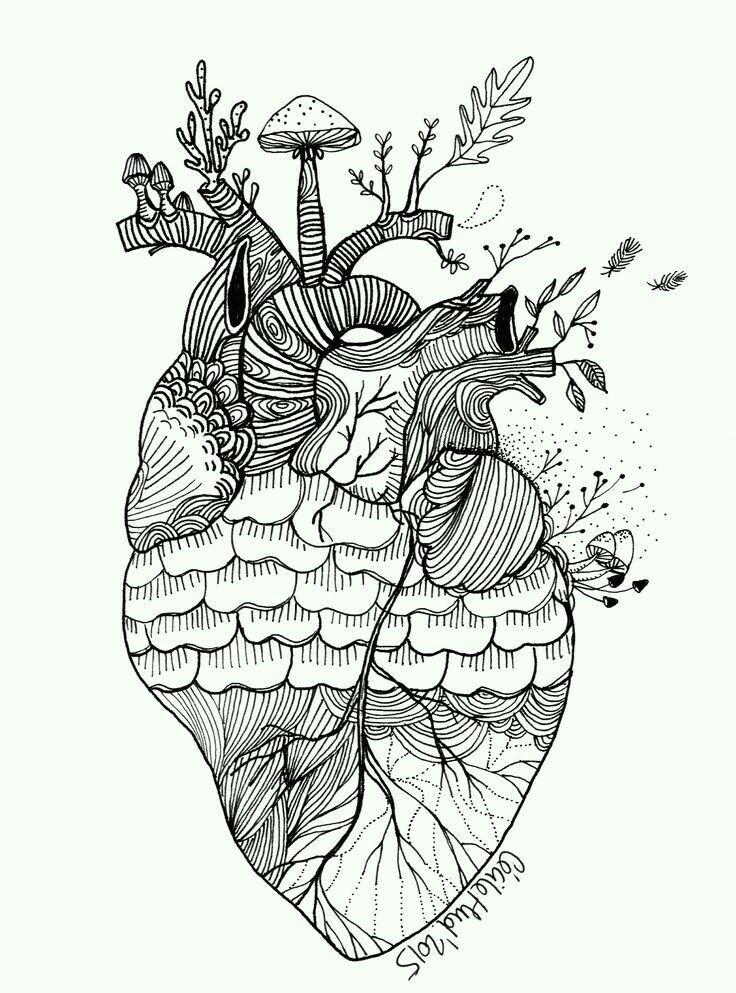 cecile heart art my heart zentangle human heart anatomical heart