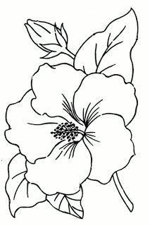hibiscus flower drawing flower pattern drawing flower outline hawaii flowers drawing simple