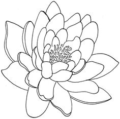 lotus flower tattoo designs amp tattoos meanings as popular as the rose is