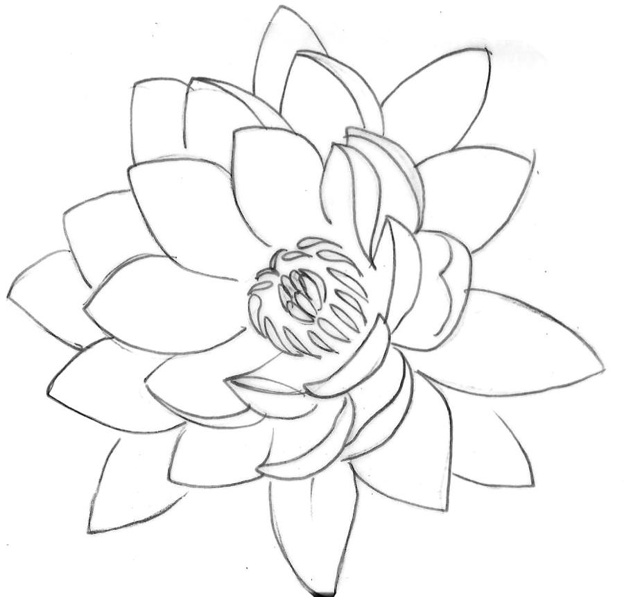 lotus tattoo 2 by metacharis on deviantart