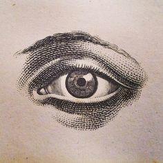a look inside some of john derian s favorite antique books dark drawings eye drawings