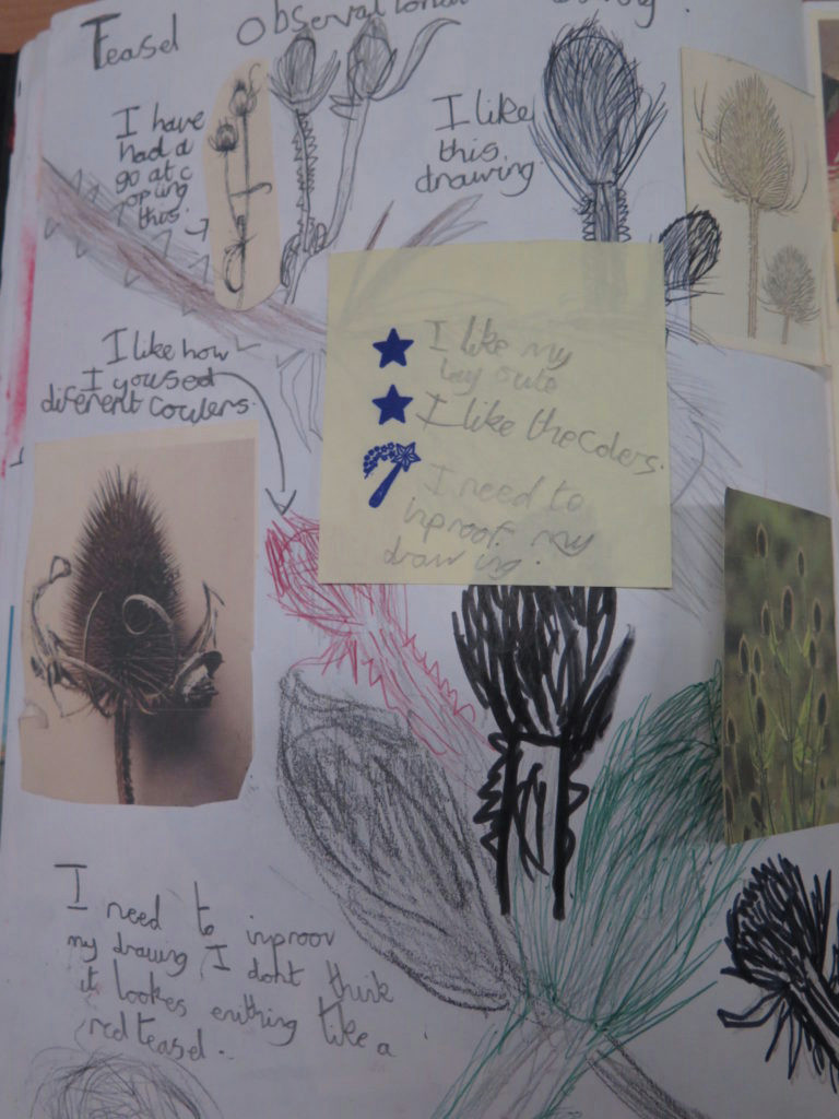 Observational Drawing Of Flowers Ks2 the Use Of Sketchbooks at Gomersal Primary School