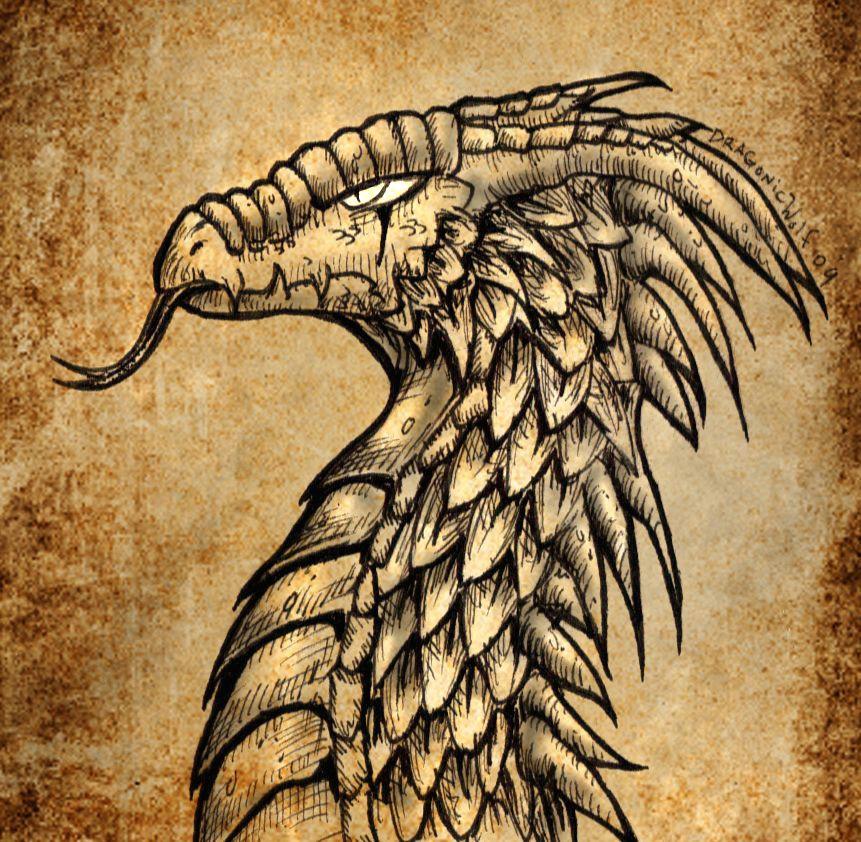 ancient dragon by dragonicwolf on deviantart