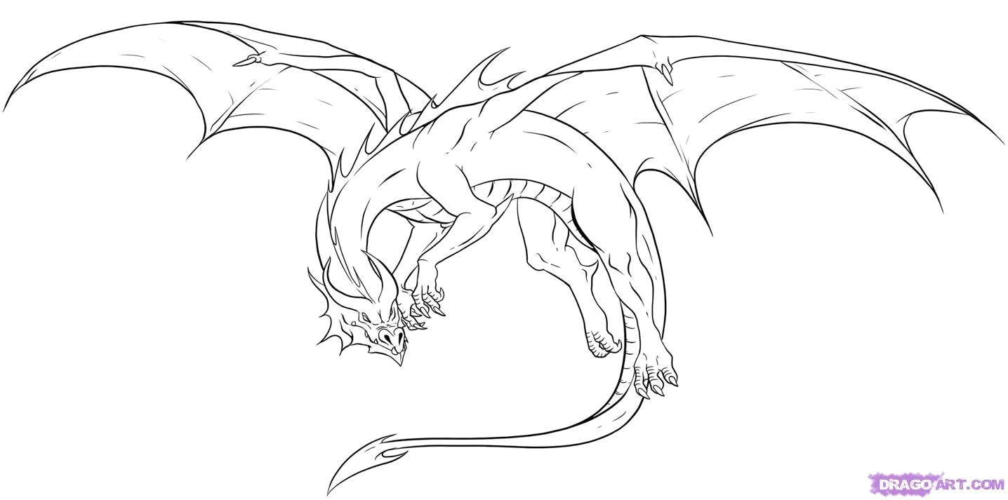 Outline Drawings Of Dragons Awesome Drawings Of Dragons Drawing Dragons Step by Step Dragons