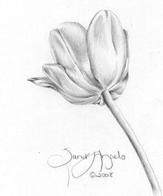 how to draw flowers in pencil google search kresba tua kou uma lecke kresby skicovana