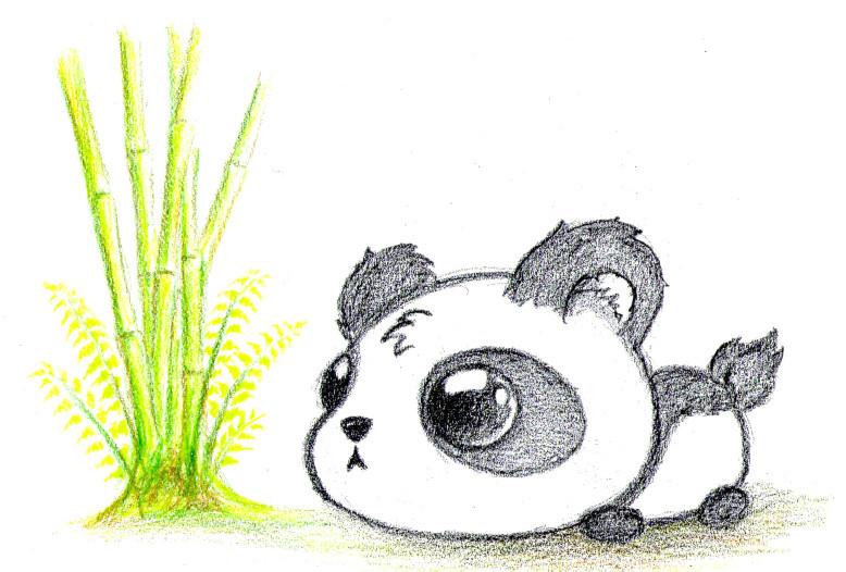 cute panda bear drawing gallery