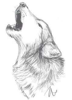 image result for wolf sketch wolf sketch easy drawings of animals animal sketches easy