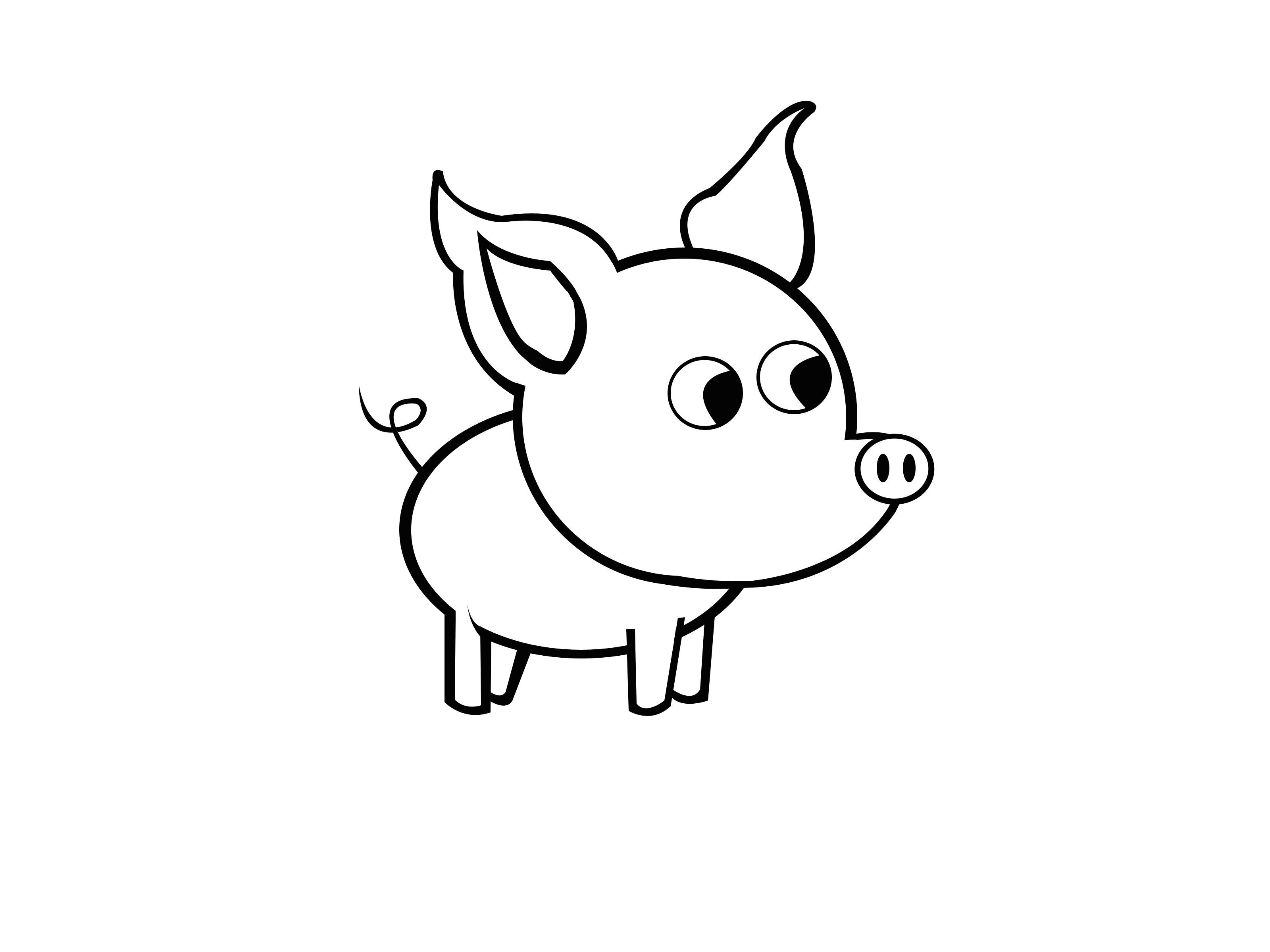 draw a simple pig step 9 jpg