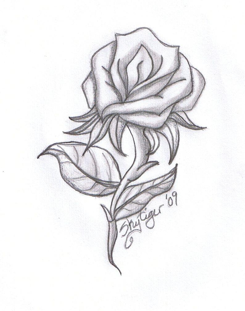 rose drawings rose pencil drawing by skytiger on deviantart