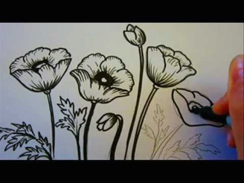 100 best how to draw tutorials flowers images drawing techniques learn drawing drawing flowers