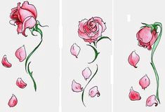 dead rose tattoo rose drawing tattoo rose drawings tattoo drawings rose heart